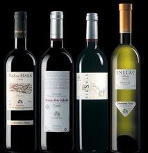 els nostres vins/our wines