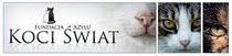 Fundacja Koci Świat