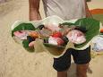 Caracola con frutos del mar
