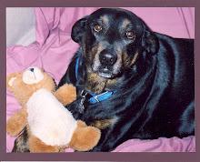 My Love, Star & Her Teddy