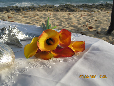 Just say Oui to this Grand Cayman Beach Wedding - image 2