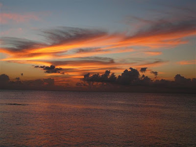 Happy New Year, hope to see you in warm and sunny Cayman Islands this year -image 4