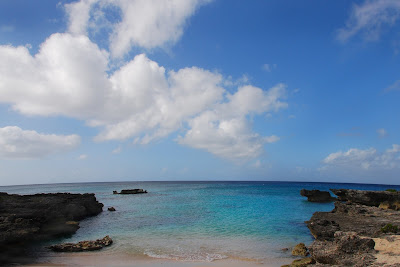 Smith's Cove, Grand Cayman's Magical Wedding Spot - image 4
