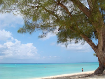 Why you should get married on a Cayman Beach, favourite Cayman Wedding spots - image 6