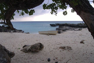 Why you should get married on a Cayman Beach, favourite Cayman Wedding spots - image 5
