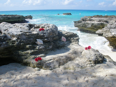 Cayman Special Marriage License Fee Increase - $50 - image 7