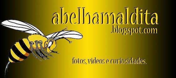 Abelha Maldita
