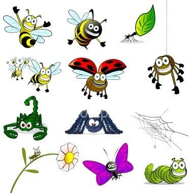 Fichas de insectos avispa mariquita escorpion ara a hormiga gusano mariposa fichas - Fotos de insectos para imprimir ...