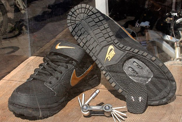 Nike Dunk Spd Bmx Shoes