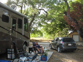Travel With Whippets Sumter Oaks Rv Park Disney World