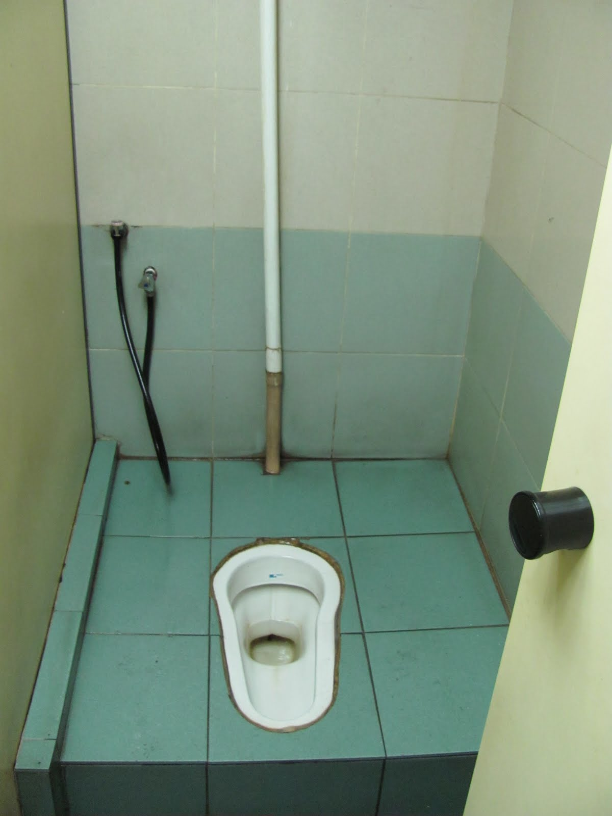 Mentakab Malaysia  city pictures gallery : Mark McGinley's Fulbright in Malaysia: Malaysian Toilets