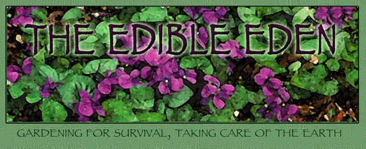 The Edible Eden