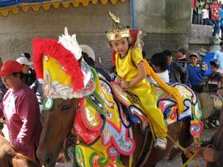 foto kuda renggong - gambar binatang