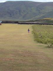 Gower Gallop 30