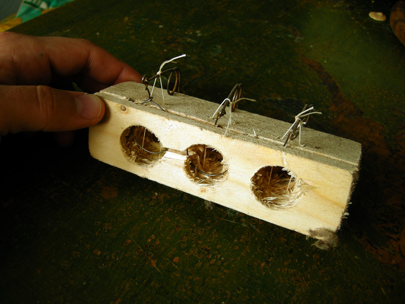 Design farmers market types of mousetraps - Trap meubilair kind ...