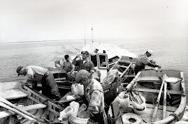 Pescadores de Sesimbra