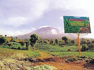 Rusa muntjak Sumatera ditemui semula