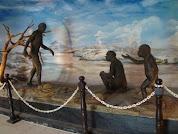 Manusia Purba, Triniil, Ngawi