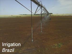 irrigation Brazil