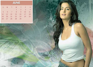 New Year Calendar 2011 - June