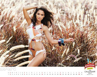 Kingfisher Calendar 2011 - January
