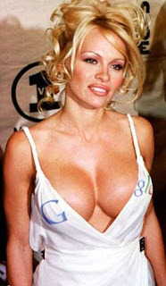 Pamela Anderson still hot: David Hasselhoff