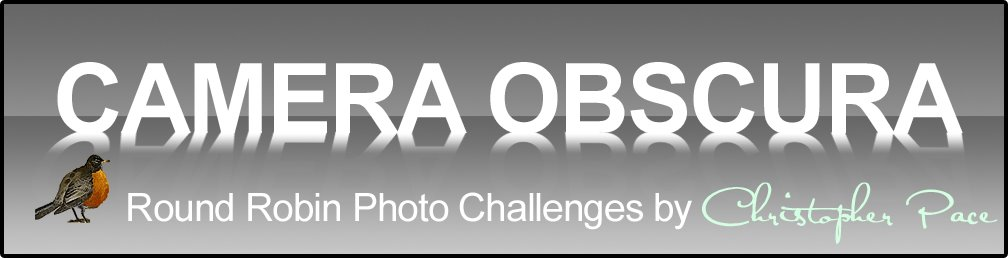 Camera Obscura  Round Robin Photo Challenges