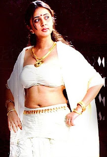 Actress in white saree spicy photos