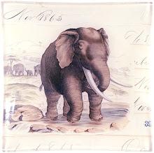 .olifant.