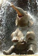 .elephant smile.