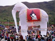 .cambodian elephant.