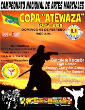 """Campeonato Nacional de Artes Marciales Copa """"ATEWAZA"""" 2011"""