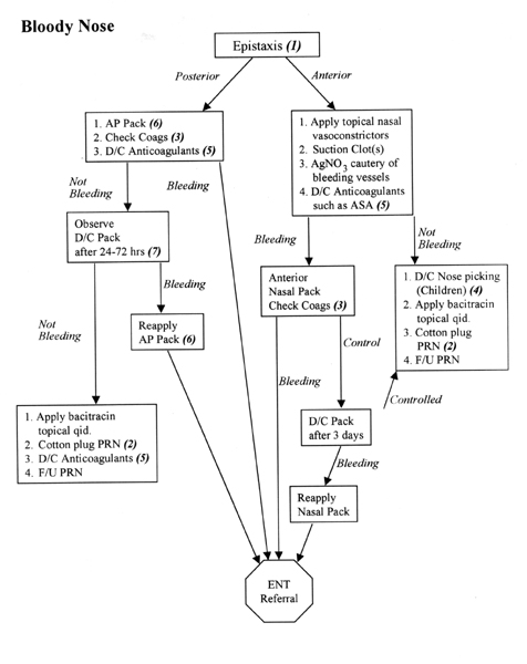 Doctors Gates: Algorithm for the diagnosis and treatment of epistaxis