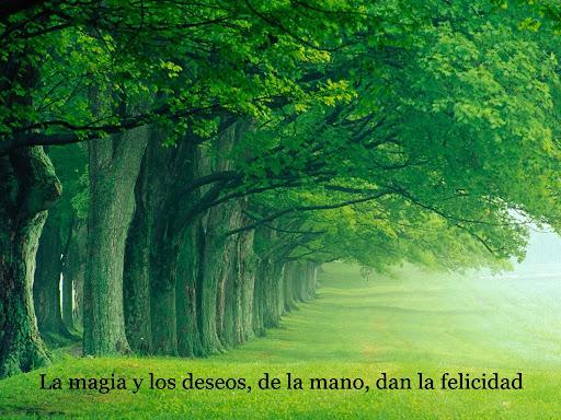 La magia y los deseos, de la mano, dan la felicidad.
