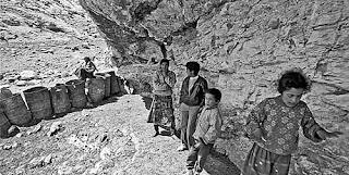 Beduinos