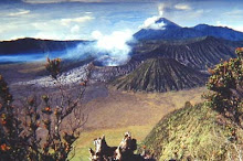 BROMO-TENGGER-SEMERU National Park address to have information