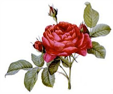 The Rosarian