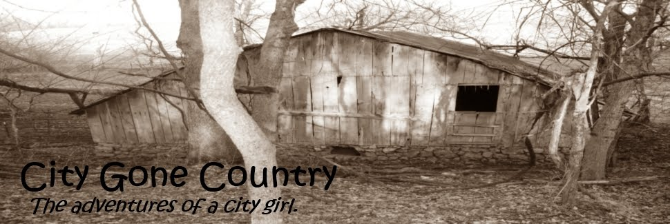City Gone Country