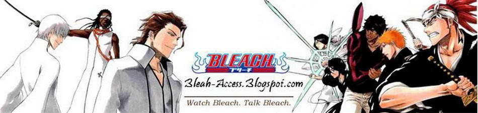bleach access