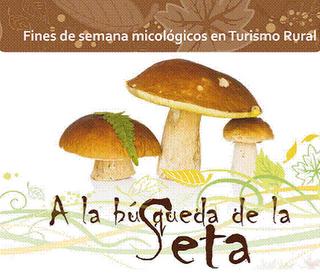Turismo micológico en Galicia