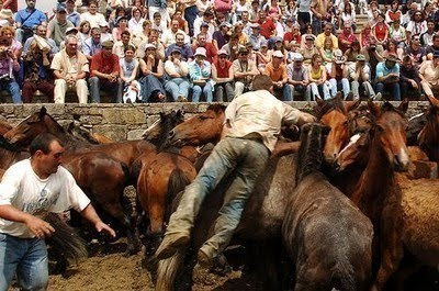 Rapa das Bestas Curro de caballos