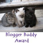 Blogger Buddy Award