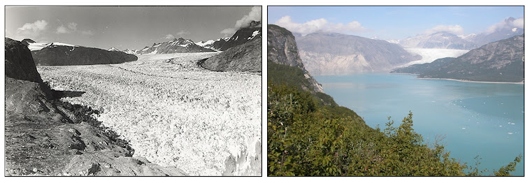 Muir Glacier - 63 years of change