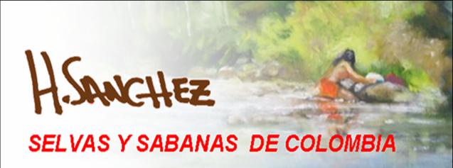 selvasysabanasdecolombia