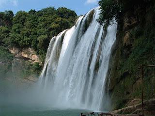 the yellow fruit tree waterfall-11