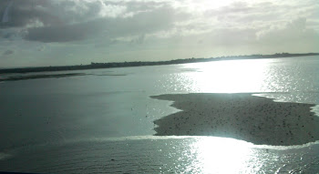 zona ribeirinha de alcochete, braço de mar, rio tejo