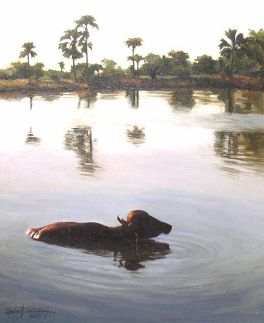 Sanjay Bhattacharya buffalo in water