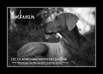 RIP Mackenzie