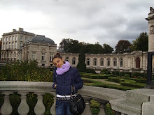 Bruselas...y mi cursiosidad por el primer mundo