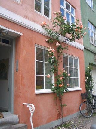 [Sommerhus+med+Kristine,+18.+juni+2008+004,+blog]